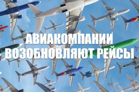 Авиакомпании России возобновляют рейсы с 1 июня
