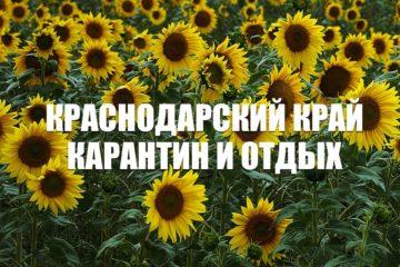 Краснодарский край карантин 14 дней и отдых