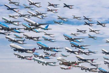 Количество рейсов авиакомпаний