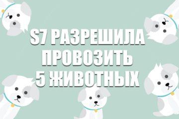 S7 Airlines разрешила провозит 5 животных
