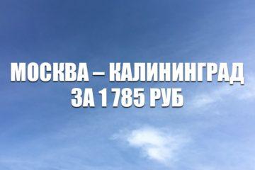 Авиабилеты Utair Москва – Калининград за 1785 руб.