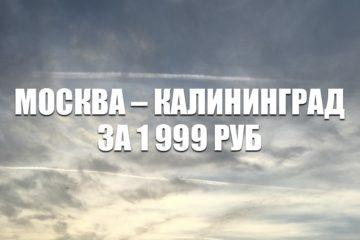 Авиабилеты «Победы» Москва – Калининград за 1999 руб.