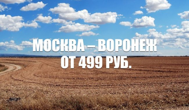 Авиабилеты Москва – Воронеж 499 руб.