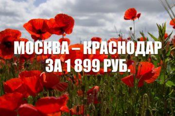Авиабилеты «Победы» Москва – Краснодар за 1 899 руб.