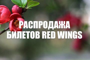 Распродажа билетов Red Wings на весну-лето 2021