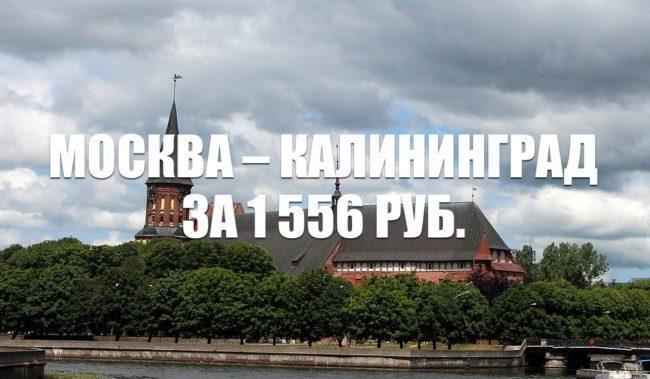 Авиабилеты Москва - Калининград за 1 556 руб