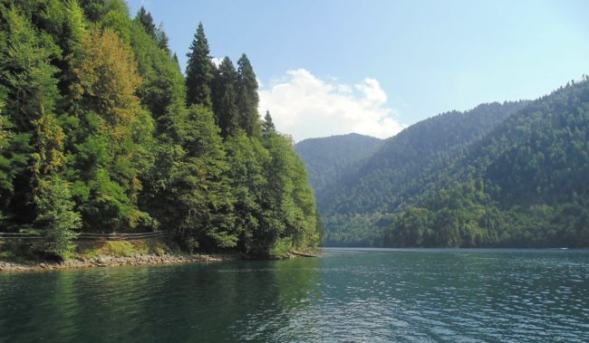 Абхазия поездка к Озеру Рица