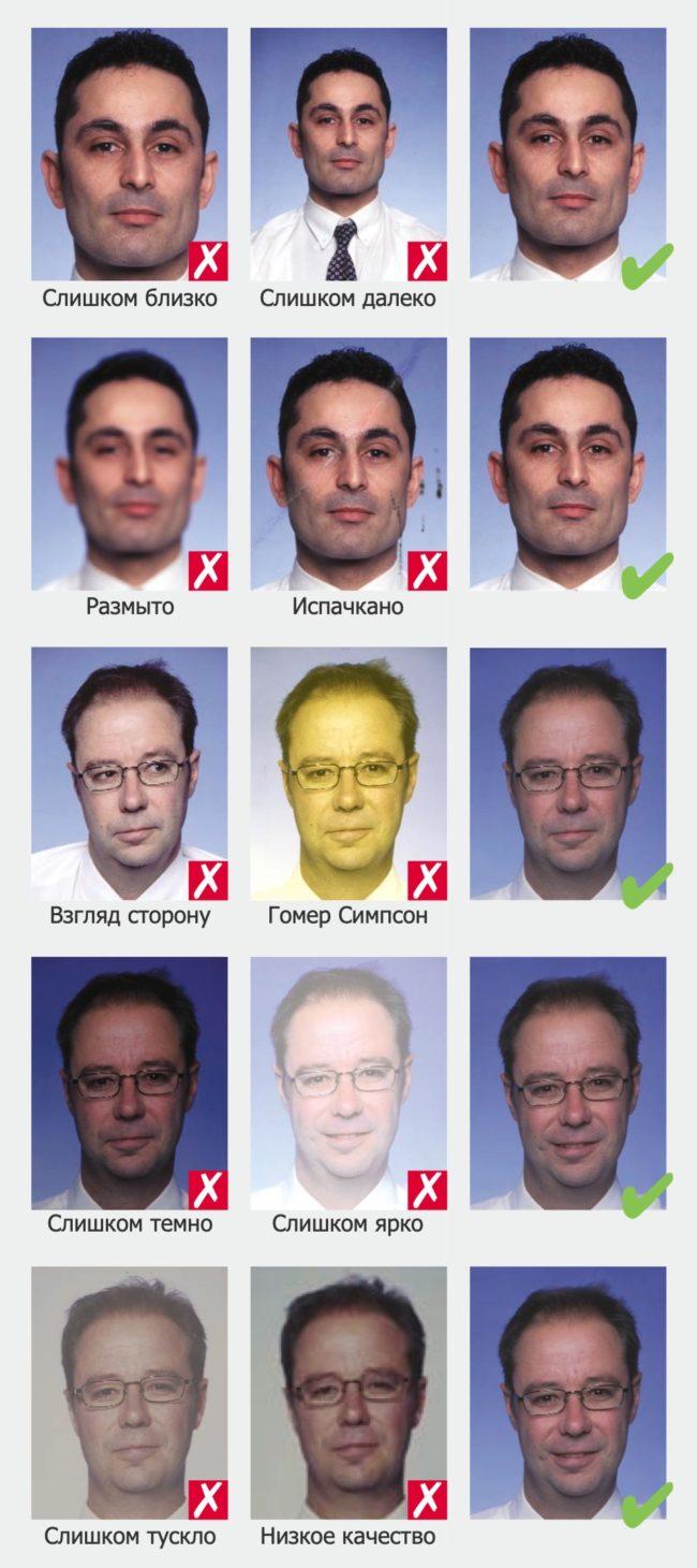 Фотография на шенгенскую визу