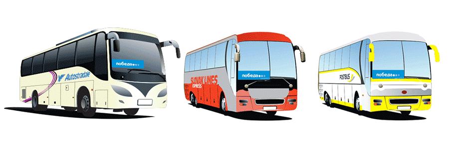Автобусы Fly&Bus Победы