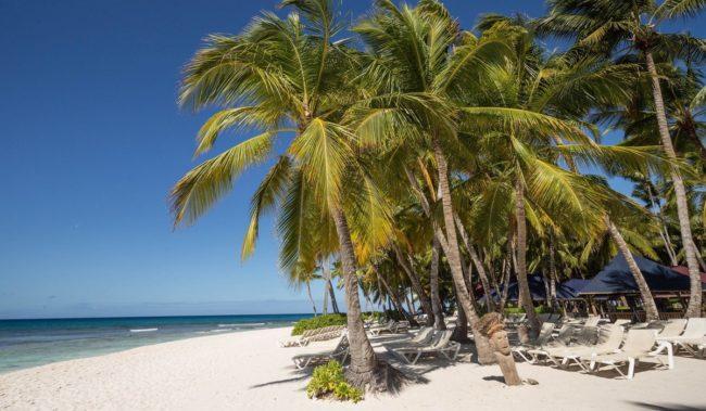 Отдых зимой в Доминикану